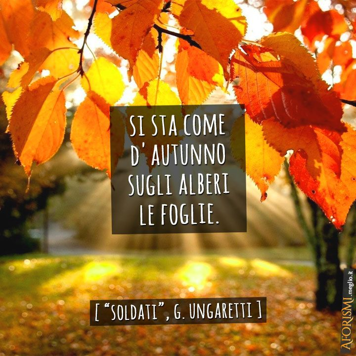 Parafrasi, storia, analisi e commento alla famosa poesia di Giuseppe Ungaretti, Soldati: si sta come d'autunno sugli alberi le foglie. Fu composta nel 1918.