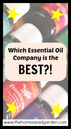 Which Essential Oil Company is the Best?!