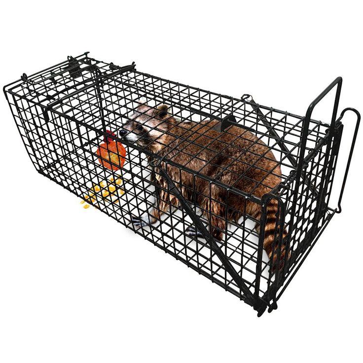 "Professional Humane Live Animal Trap 28""X12""X12"" Catch"