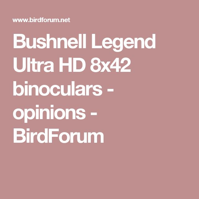 Bushnell Legend Ultra HD 8x42 binoculars - opinions - BirdForum