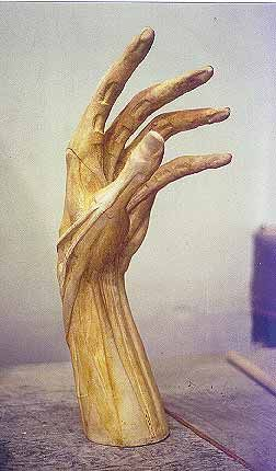 Hand - Sculpture Created by Michael Keropian. Focusing on anatomy and sculpture which is a modern take on traditional sculpture.