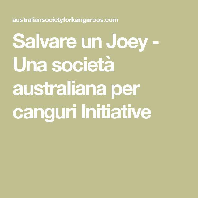 Salvare un Joey - Una società australiana per canguri Initiative