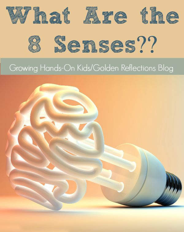 Did you know there are really 8 senses that are part of the sensory processing system, not just 5??