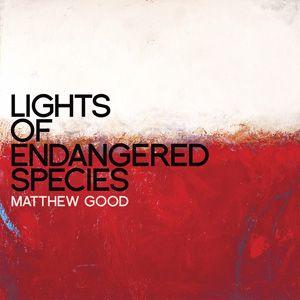 Lights Of Endangered Species 12 Double-Vinyl LP