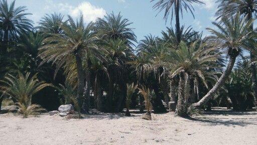 Paradise on Creta