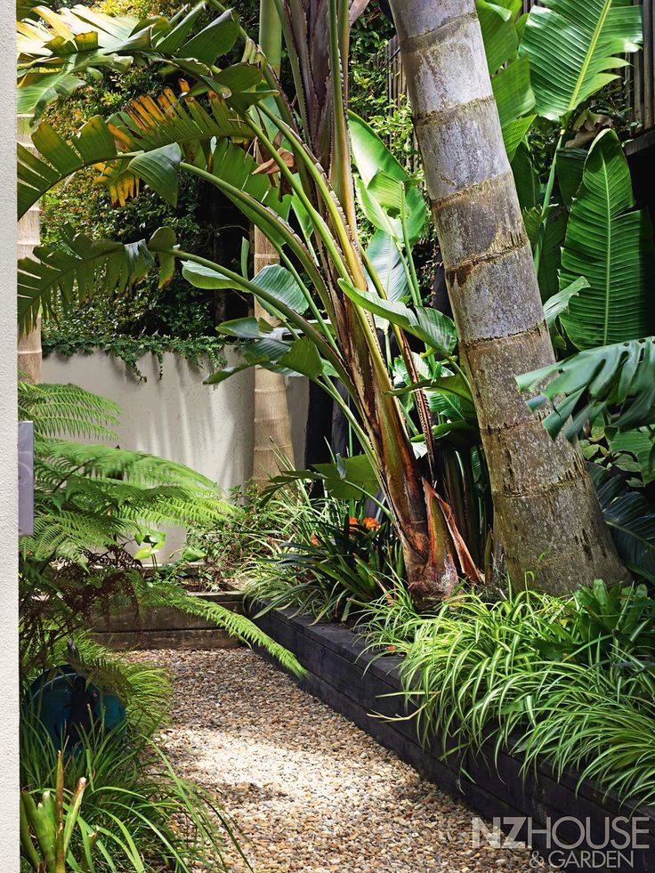 17 best images about tropical paths on pinterest bali for Tropical courtyard garden design