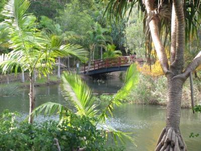 Ceremony Place - Botanical Gardens Hervey Bay