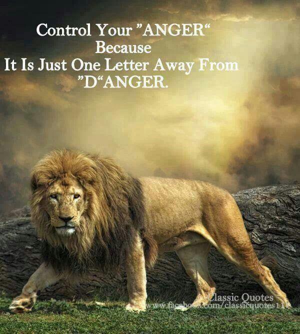 19 Best Lion Quotes Images On Pinterest