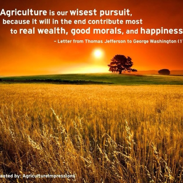 Ag Quote Best 25 Agriculture Quotes Ideas On Pinterest  Ag Quote Farmers