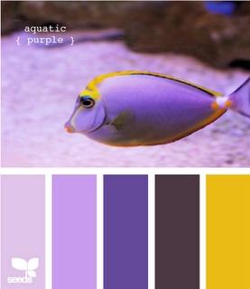 Aquatic Purple: Colors Combos, Nurseries Colors, Design Seeds, Purple Colors, Colors Palettes, Wedding Colors, Colors Schemes, Colour Palettes, Aquatic Purple