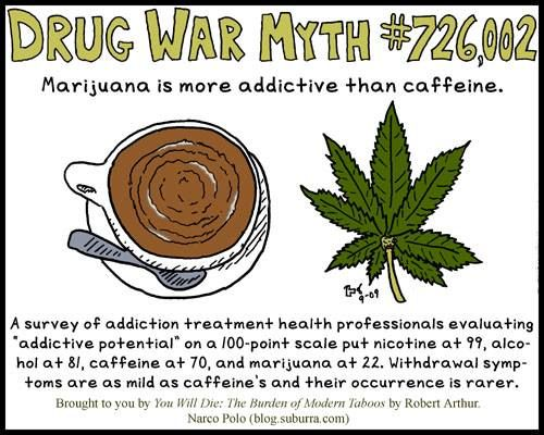 271 best images about Cannabis Facts, News & Information on Pinterest