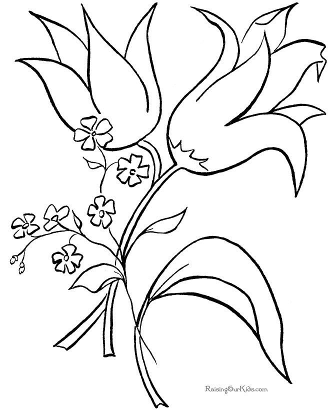 120 Best Printable Colouring Pages Images On Pinterest