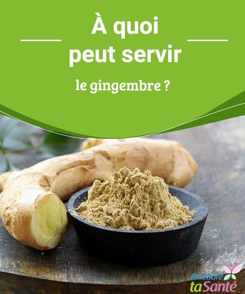 À quoi peut servir le gingembre ? Le gingembre est très utile au quotidien, connaissez-vous tous ses bienfaits ? Venez découvrir toutes ses propriétés fascinantes dans notre article !