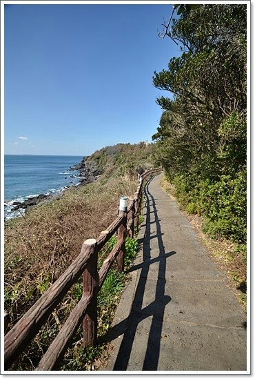 #Jeju Olle Trail Route 5