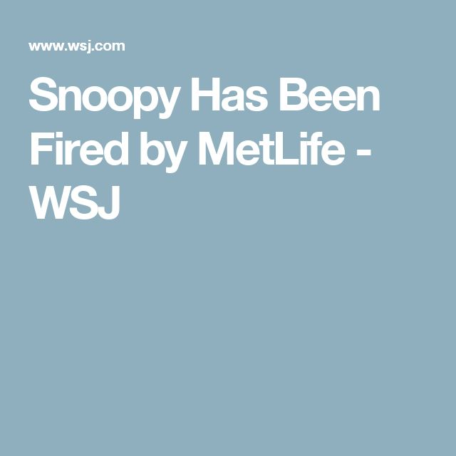 The 25+ best Metlife fires snoopy ideas on Pinterest - metlife financial services representative sample resume