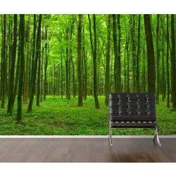 Vlies fotobehang Groene Bomen - Bomen en bossen | Fotobehangen.nl