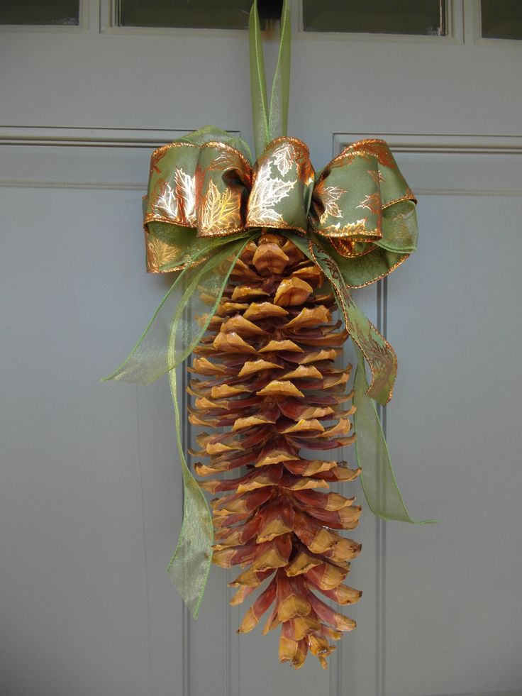 house of pinecones 25 best pine cones from the tree images on pinterest pine cones
