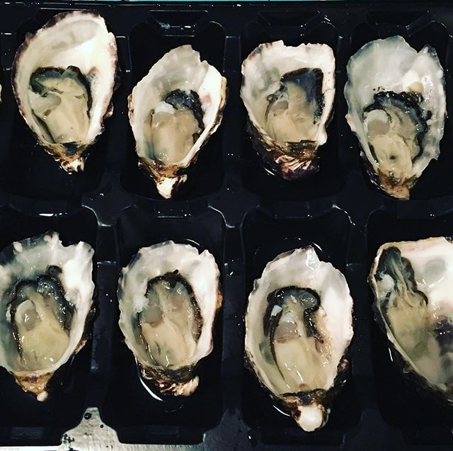 """Had some nice #oysters #カキ from #barillabay #バリーベイ #barillabayoysters #バリーベイカキ for #dinner #晩ご飯 #夕食 ⁂ ⁂ ⁂ ⁂ ⁂ #igtasmania #tasmania #タスマニア #tasmaniagram #tasmaniafood  #tasmanianmade #tasmaniascenery #discovertasmania #Australia #オーストラリア  #passionpassport #travelgram #exploredaily #aroundtheworld #townske #hobart #ホバート"" by @alexnxy. #fslc #followshoutoutlikecomment #TagsForLikesFSLC #TagsForLikesApp #follow #shoutout #followme #comment #TagsForLikes #f4f #s4s #l4l #c4c #followback…"