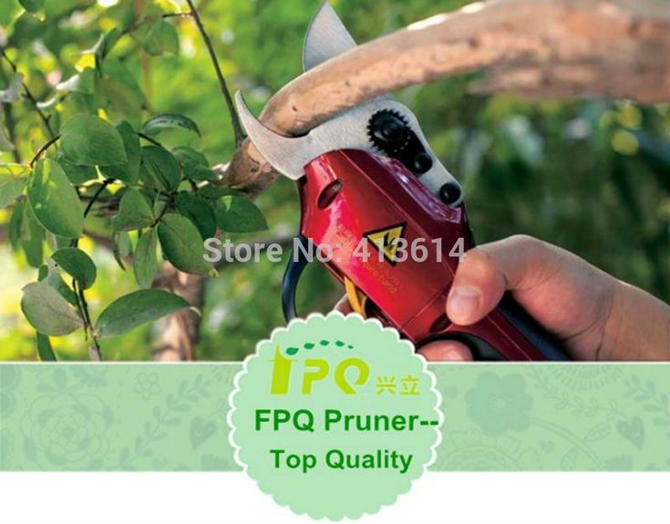 Electric pruner and electric pruning shear for garden and vineyard/CE certificate/WS P-1