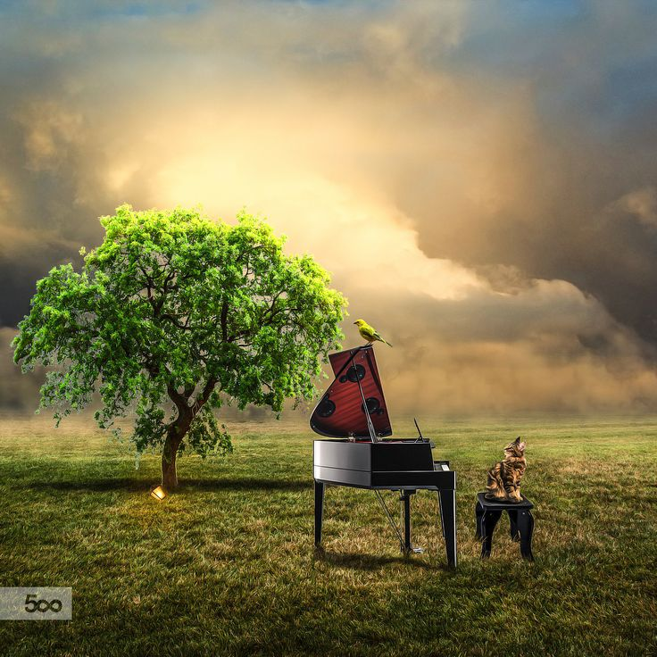 Piano by Lapanlima on 500px