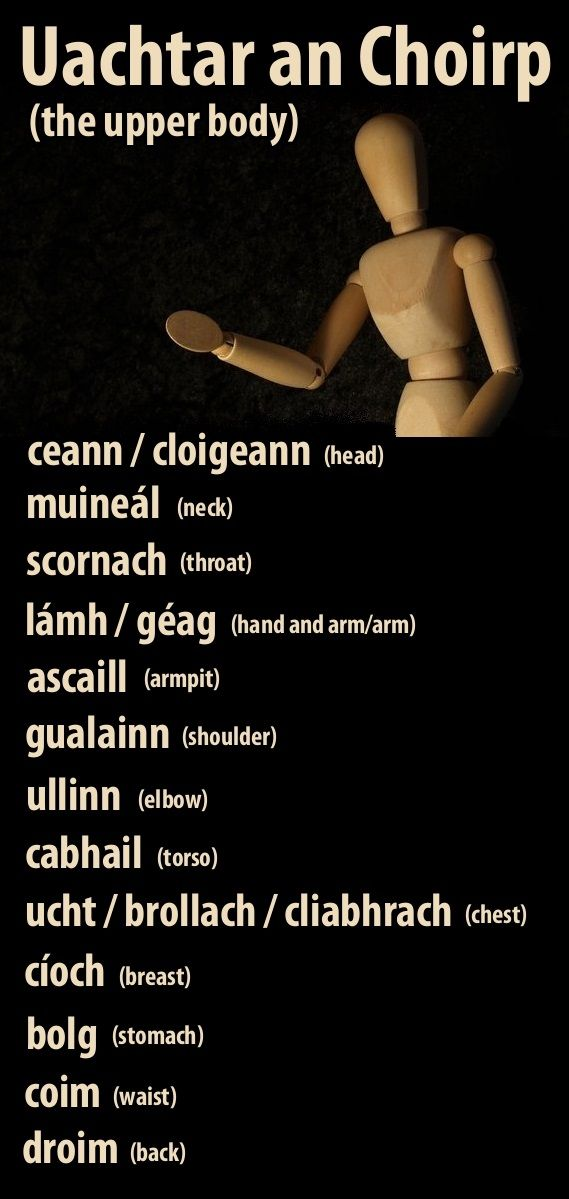 gaelic phrases The irish language (gaeilge), also sometimes referred to as gaelic or the irish  gaelic language,  an irish translation of the old testament by leinsterman  muircheartach ó  that many people worldwide were learning irish through the  duolingo app  a feature of the dialect was the pronunciation of the vowel ao,  which.