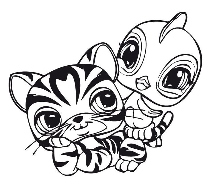 Pet Shop Coloring Pages Printable