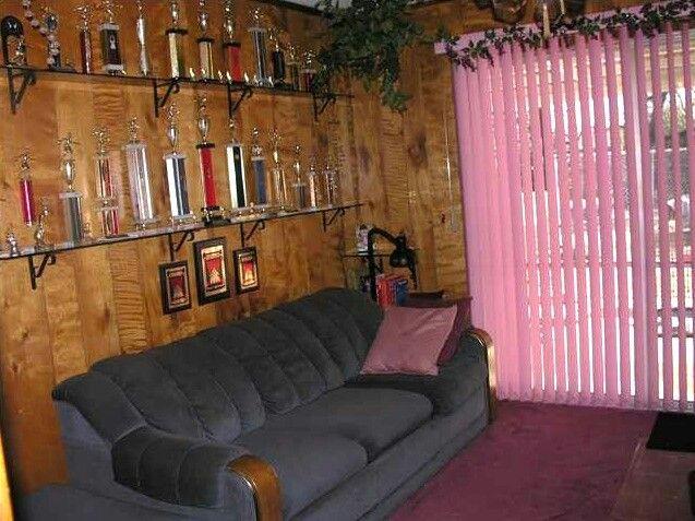 Pink vertical blinds