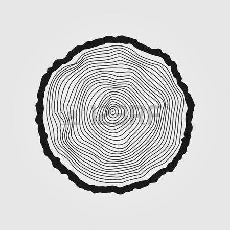 dřevo: Vector letokruhy pozadí a viděl řez kmen stromu Ilustrace