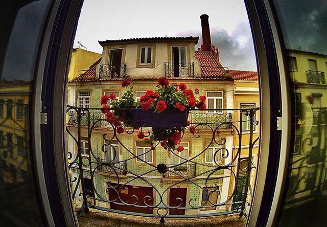 WEBSTA @ alexandralmeidasantos - #amar_portugal #amoteportugal_ #estaes_portugal#hdr_captures #hdr_portugal #HDR_Photogram #hdr_oftheworld #igersportugal #lisbonlovers #lisbonforever #portugalalive #portugal_de_sonho #Super_Lisboa #Super_Portugal #tv_hdr #tv_fisheye #kings_gopro #OK_HDR #HDR_EUROPE #ig_portugal_ #ok_portugal #pristine_hdr #coolworld_hdr #loves_besthdr #stars_hdr #igglobalclubhdr #balkan_hdr #LOVES_PORTUGAL #amar_lisboa #alexcolor