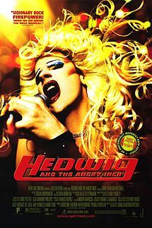 Brilliant musical about a sex change gone wrong. so Hedwig is left with an angry inch!!!