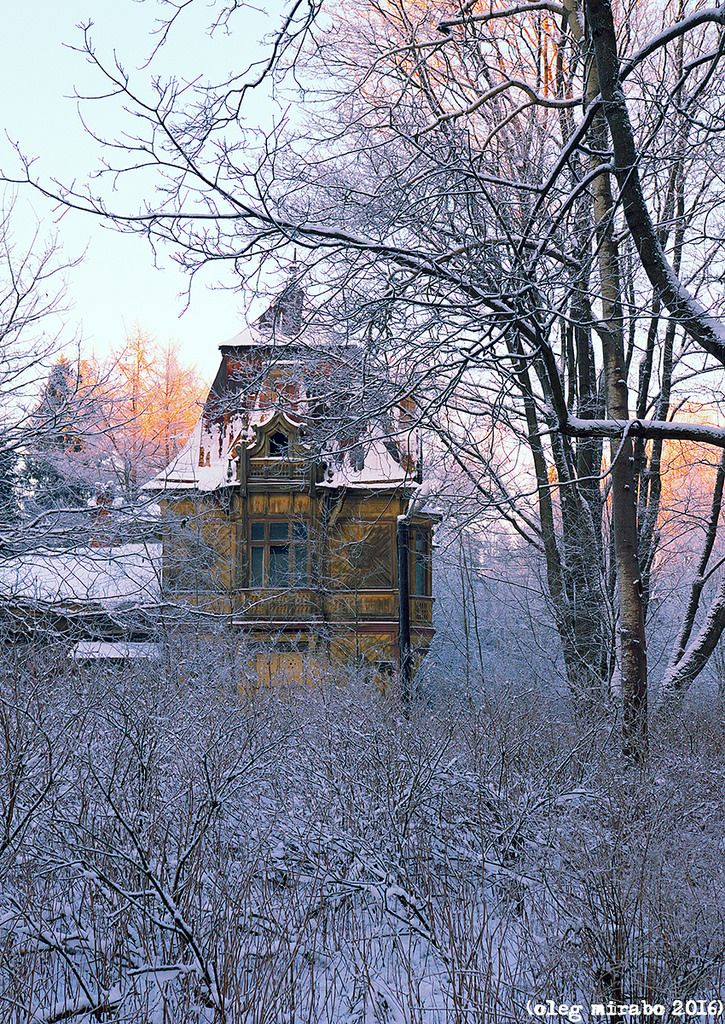 Yellow Сottage (рус. Желтая дача). Shuvalovsky Park | Shuvalovsky Park is located between the village Pargolovo and the Zamanilovka River. It is a landscape architectural monument of the 19th century. The Yellow Dacha is a wooden lodge designed by Maximilian Messmacher for his own family.