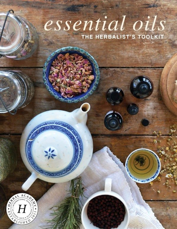Best 94 herbal academy coupons our favorites images on pinterest affordable herbal educational resources come learn about a wonderful bundled collection of 20 ecourses fandeluxe Images