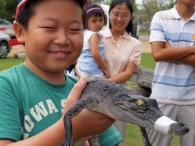 Koorana Crocodile Farm. Daily tours, restaurant serving crocodile and crocodile leather accessories available.
