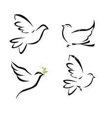 peace dove illustration - Google Search