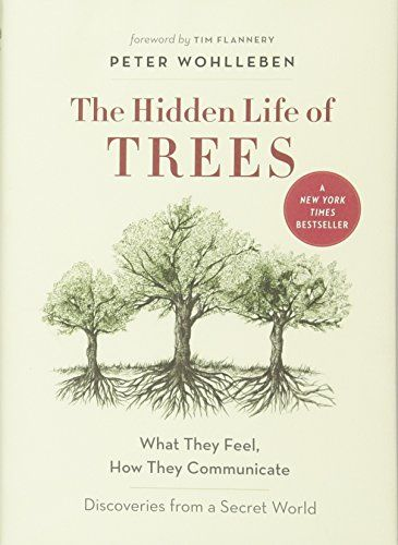 The Hidden Life of Trees: What They Feel, How They Commun... https://www.amazon.co.uk/dp/1771642483/ref=cm_sw_r_pi_awdb_x_u-D0zbF4MNGN4