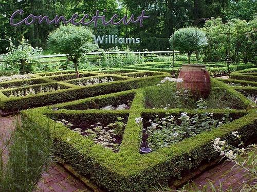 37 best images about parterreextraordinaire on pinterest for Parterre vegetable garden design