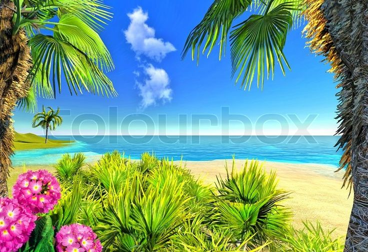 32 best images about oceanview with flowers on pinterest