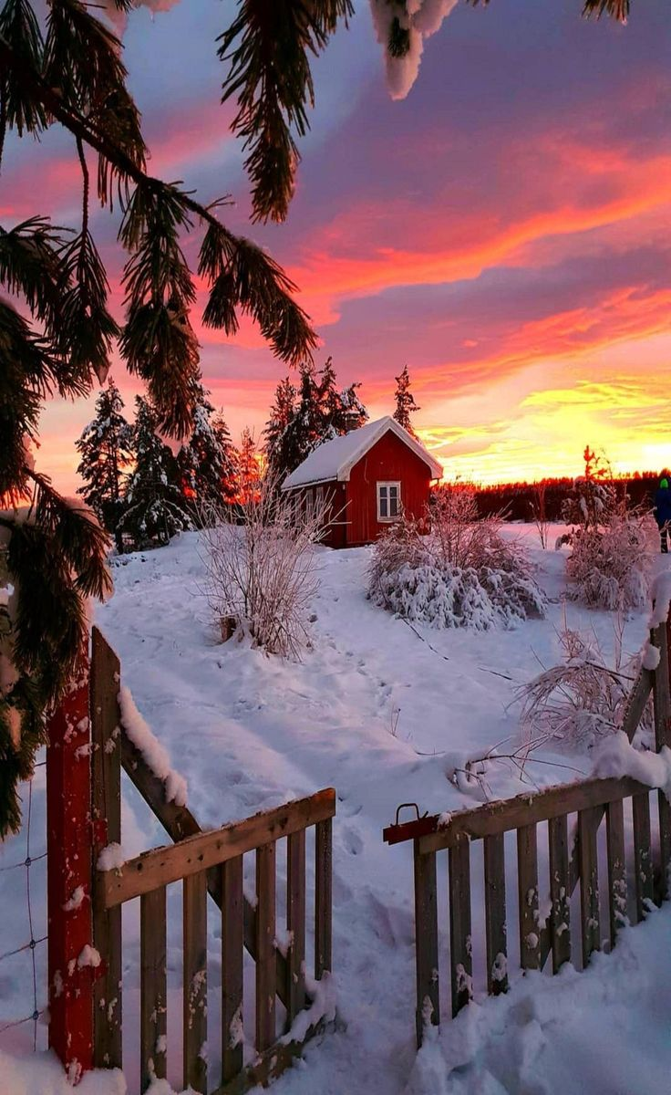 #kar #kış #snow #winter #barış #şenduran #barışşenduran #snowview #winterview #view #nature