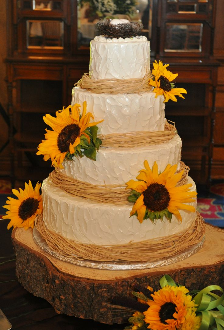 wedding cakes canterbury 17 best ideas about lake cake on fish birthday 24015