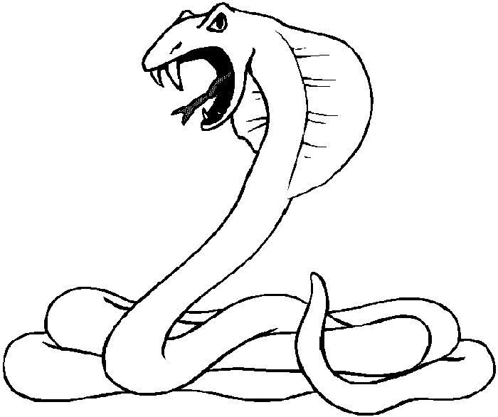 desert animals coloring pages print outs coloring panda - Animal Outlines For Colouring