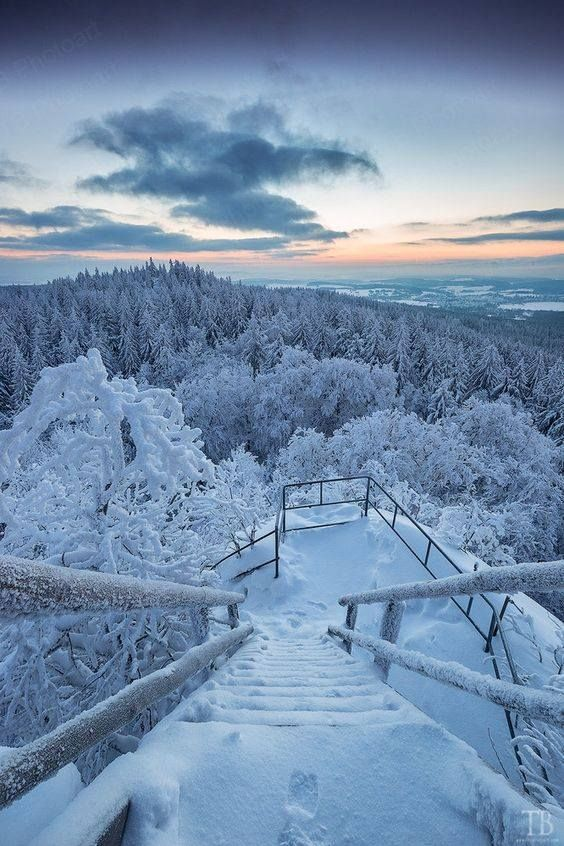 Winter - Photo by Thomas Buchmann (Allemagne)