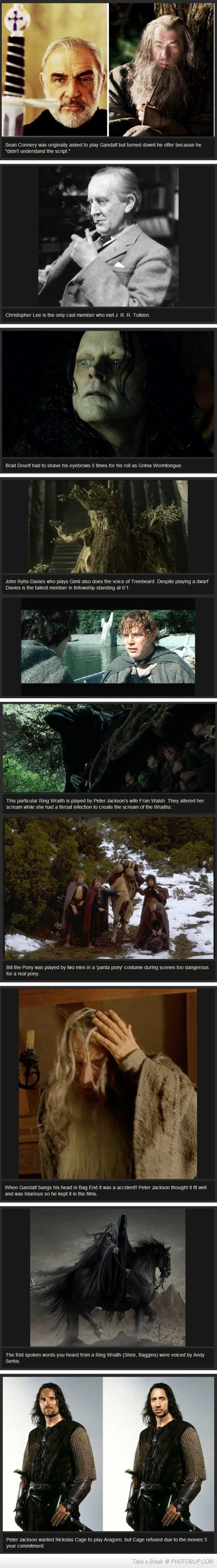 Lord Of The Rings Facts. I can't believe Peter Jackson wanted Nicolas Cage as Aragorn!! that would have been horrible.