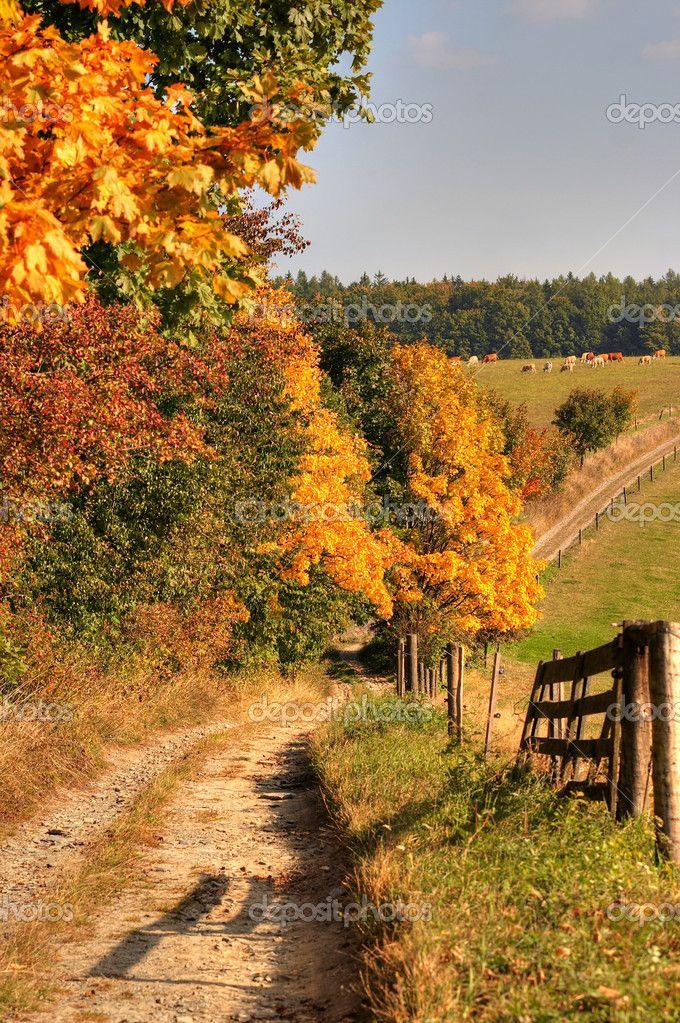 country roads usa   camino rural y el paisaje otoñal - Imagen de stock