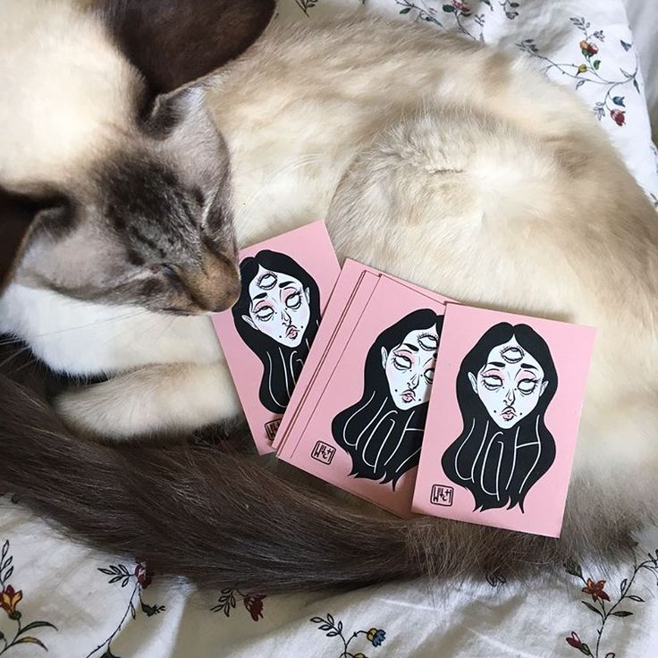 My new vegan stickers are officially cat approved! Shop @ artificialdark.storenvy.com