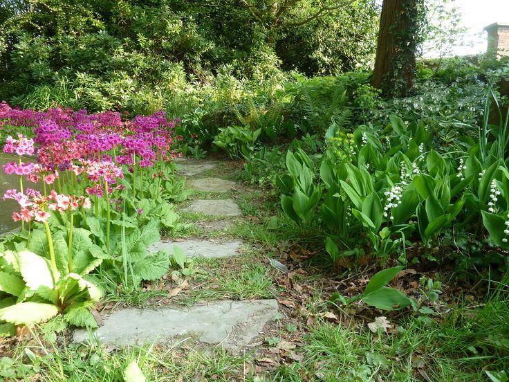 148 Best Shade/Woodland Garden Images On Pinterest | Woodland Garden, Shade  Garden And Ornamental Grasses