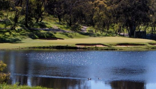 New addition to our 2 for 1 site at Flagstaff Hill Golf Club. Enjoy this picturesque course with a mate while just paying for one! #golf #golf2for1 #golfsa