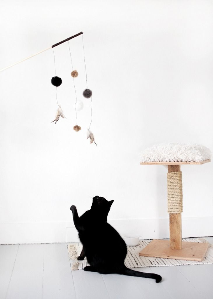 This DIY cat toy will be a hit with the furry friend at home.