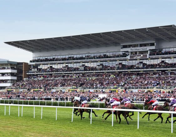 Discover the best horse racing tips from real experts. Learn how to win with info about races in Cheltenham, Doncaster, Lingfield, Newcastle, Wolverhampton on Dec 10.