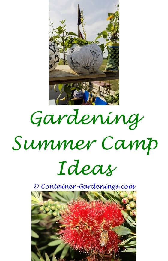 front yard rose garden ideas - tropical garden design ideas uk.gardening triangle ideas contemporary small front garden ideas garden ideas south africa 4637326458