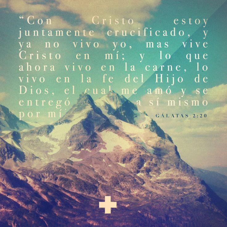 DIA #9 - Gálatas 2:20  #devocionalaviva  >>>>> www.devocionalaviva.com <<